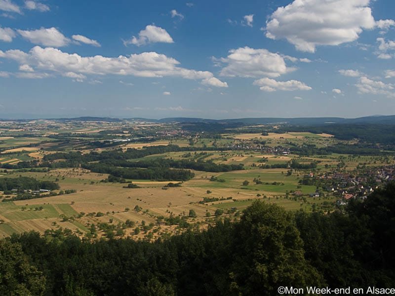 Hike around Saverne (7h)