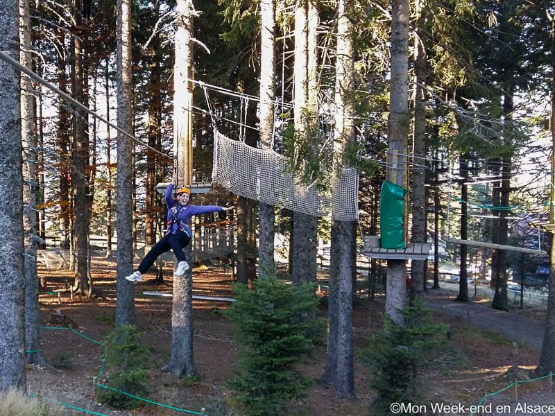Adventure tree climbing at the park Form'aventures of Schnepfenried