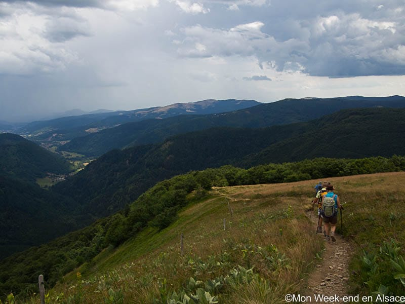 Hike around Mittlach, in the Valley of Munster (6h)