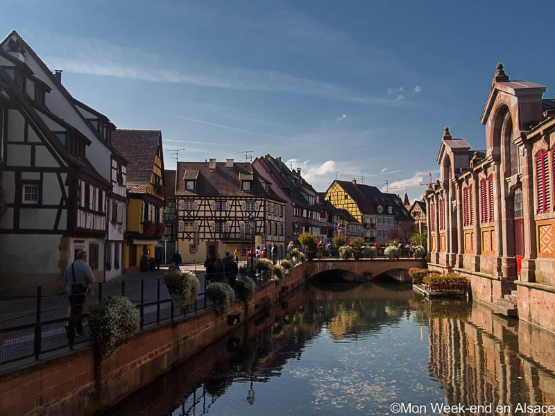Guided tour of Colmar old town
