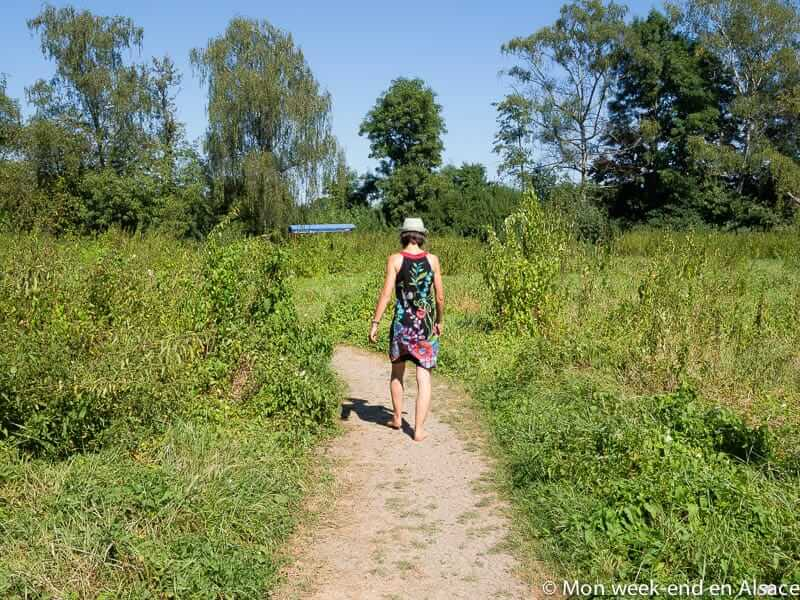 SensoRied, a free barefoot path in the Ried