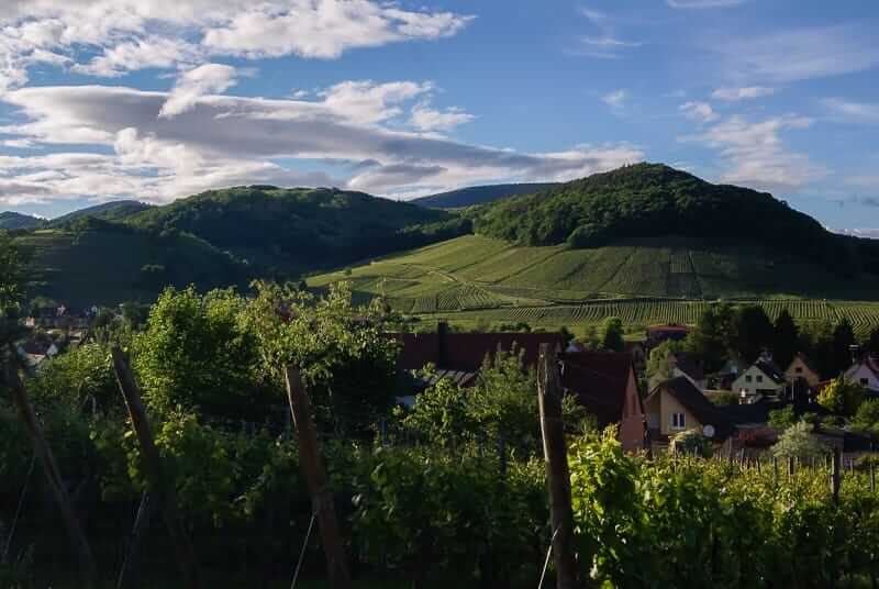 5 must-dos in Alsace for wine lovers