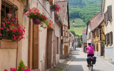 The Alsace Wine Route by bicycle